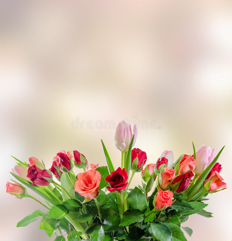 White, orange, red and yellow roses flowers, bouquet, floral arrangement, pink bokeh background, isolated royalty free stock photos