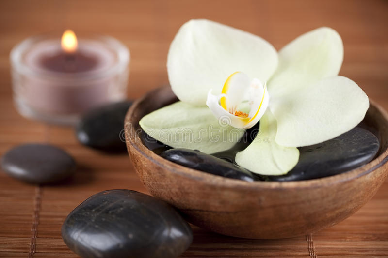 Download White Orchid Royalty Free Stock Photo - Image: 15740795