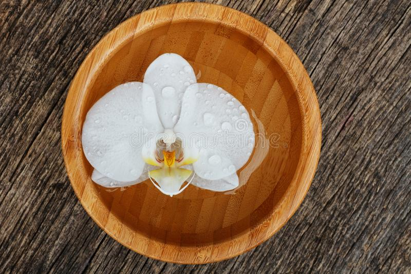 White orchid, phalaenopsis flower in bamboo bowl stock photography