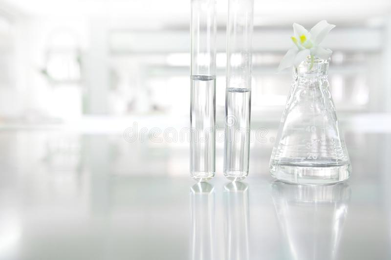 White orchid flower on glass flask and test tube in science cosm. Etic biology laboratory background stock photo
