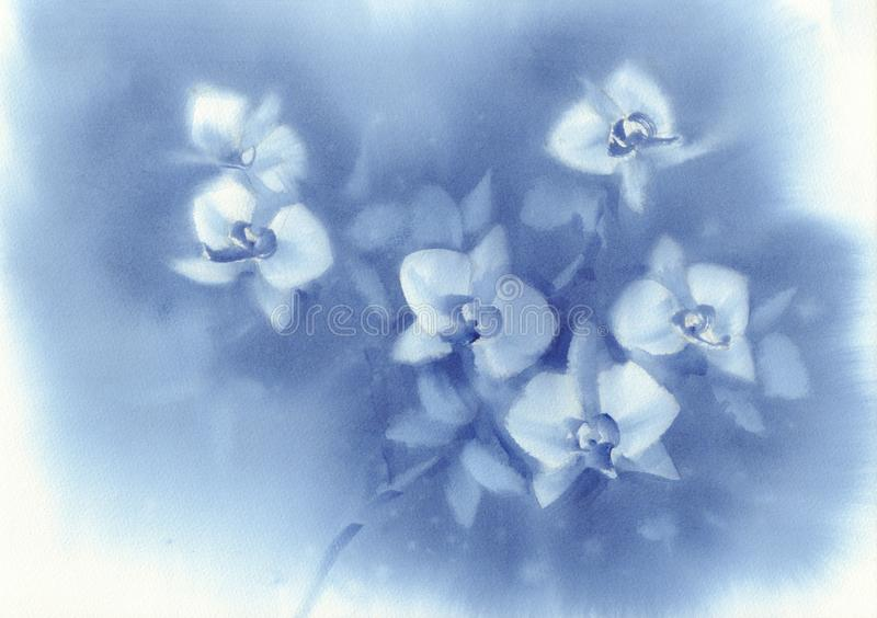 White orchid flowers on the dark blue background watercolor stock photos