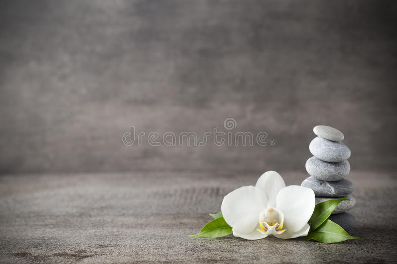 White orchid and spa stones on the grey background. royalty free stock image
