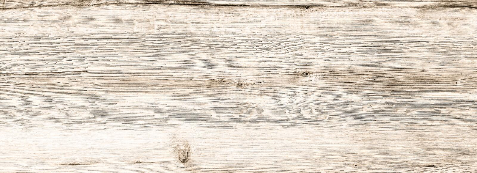 White Organic Wood Texture. Light Wooden Background. Old Washed Wood stock photos