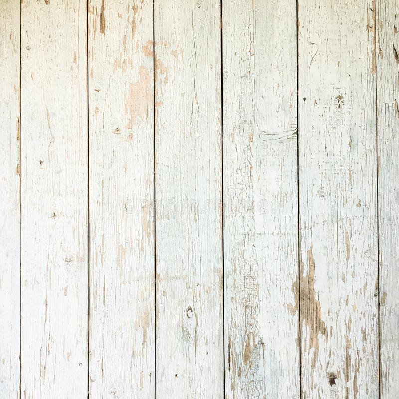 white organic wood texture light wooden background old