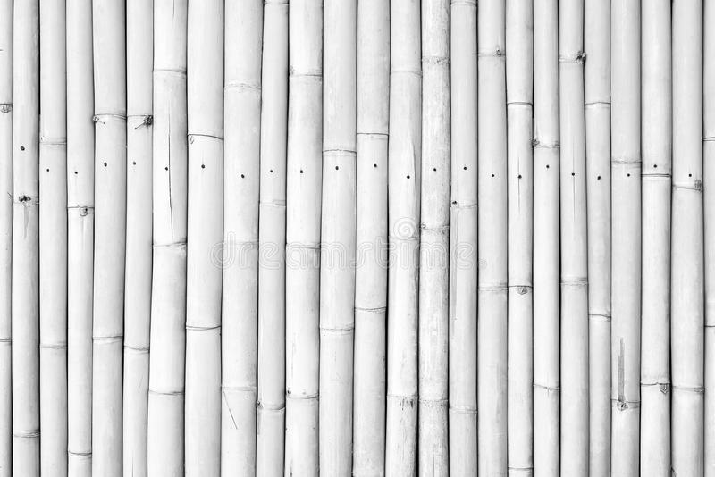 White paint bamboo fence background stock photography