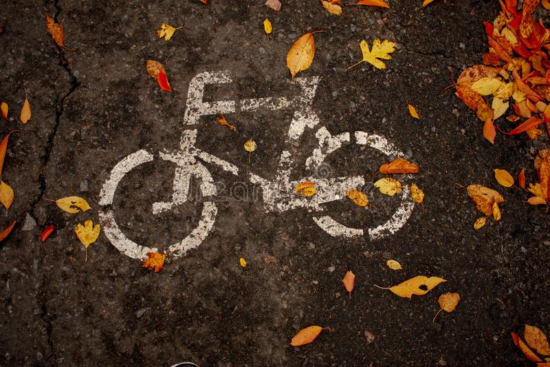 White painted bicycle sign on asphalt strewn with colorful foliage in autumn royalty free stock photos