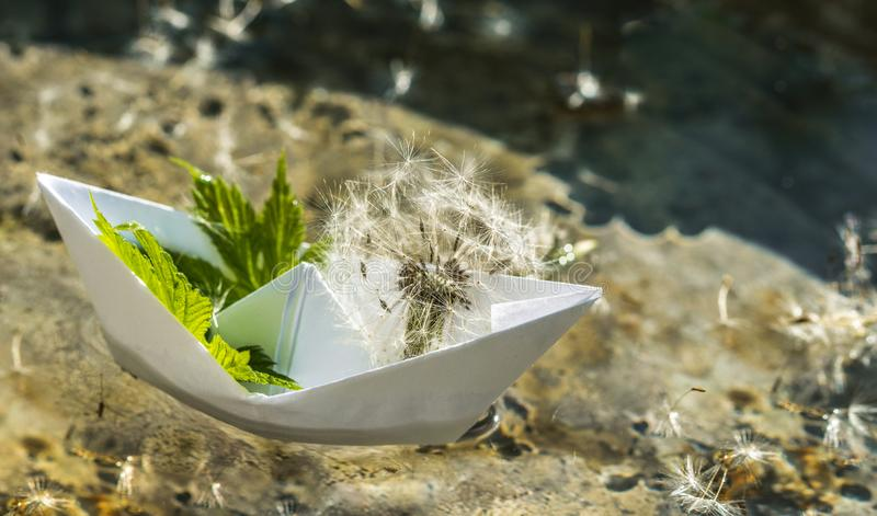 White paper boat and fluffy dandelion. Childhood dreams stock photo
