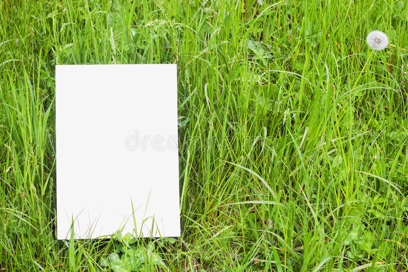 Download White Paper Card In Green Grass Stock Image - Image: 14280161