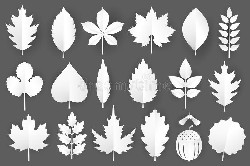 White paper cut autumn leaves set. 3d fall elements isolated on gray background.Vector illustration. White paper cut autumn leaves set. 3d fall elements royalty free illustration