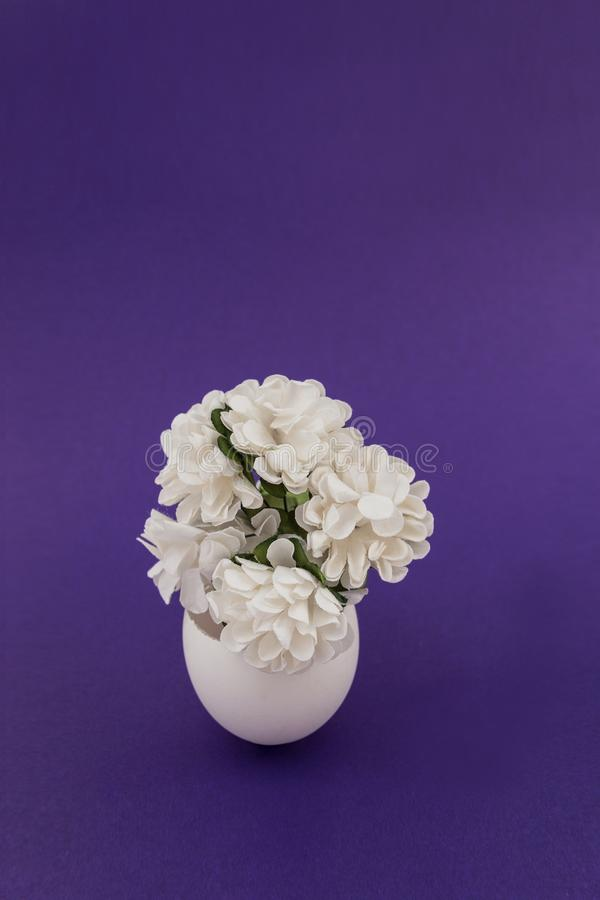 White paper flowers in an egg. Shell on a purple background. Vertically royalty free stock image