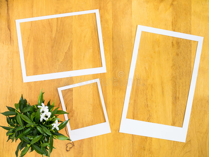White paper frame with flowerpot on wood background. royalty free stock photos