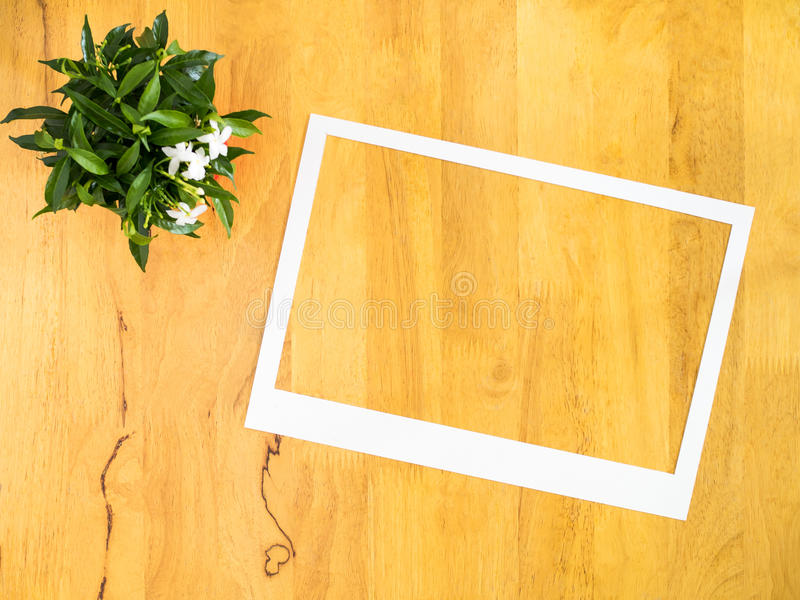 White paper frame with flowerpot on wood background. royalty free stock photo
