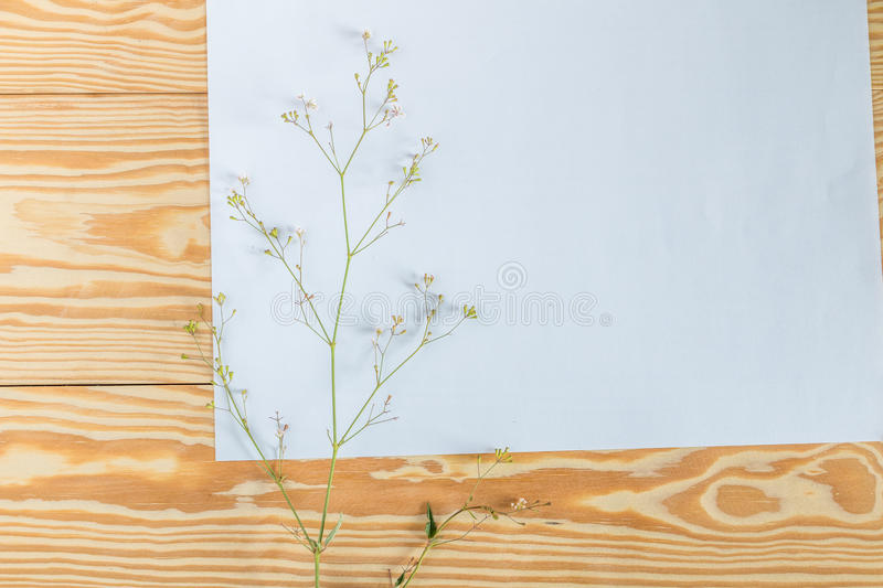 The white paper is placed on a wooden deck with flowers and leaves. royalty free stock image