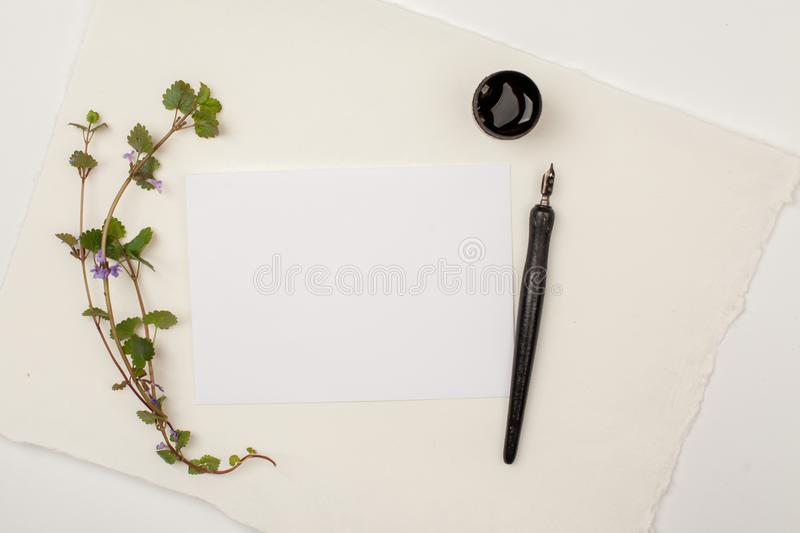 White paper sheet mockup with calligraphy nib and ink. For invitation, wedding, decoration. royalty free stock photo
