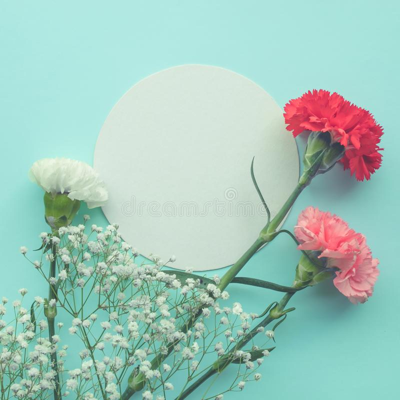 White paper space with flower on pastel color background royalty free stock photography