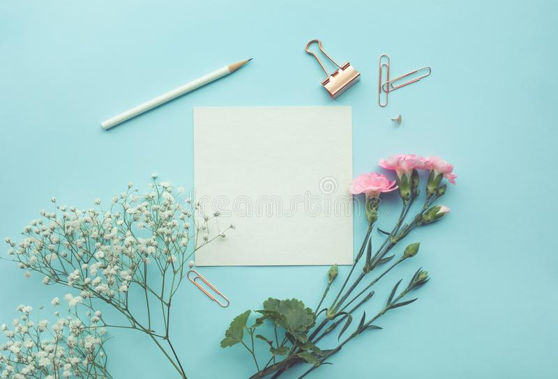 White paper space with flower on pastel color stock image