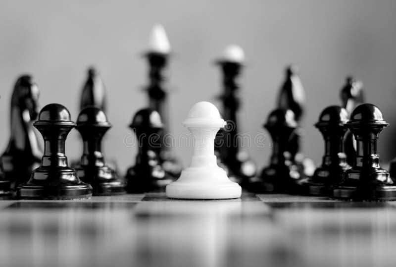 White pawn stock photo