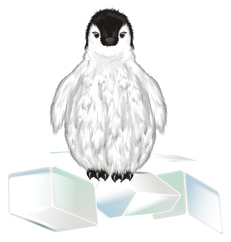 Penguin and many ices royalty free illustration