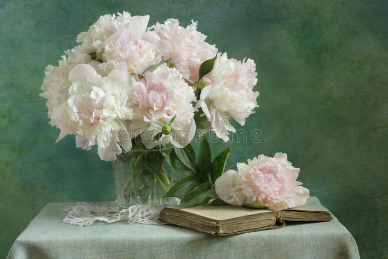 White peonies. Still life with white peonies royalty free stock image