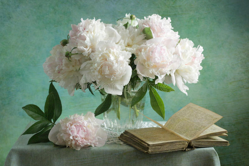 White peonies. Still life with white peonies stock photo