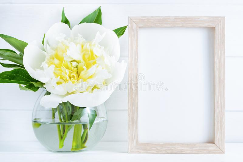 White peony flower in vase on white wooden background with mockup or copy space royalty free stock images