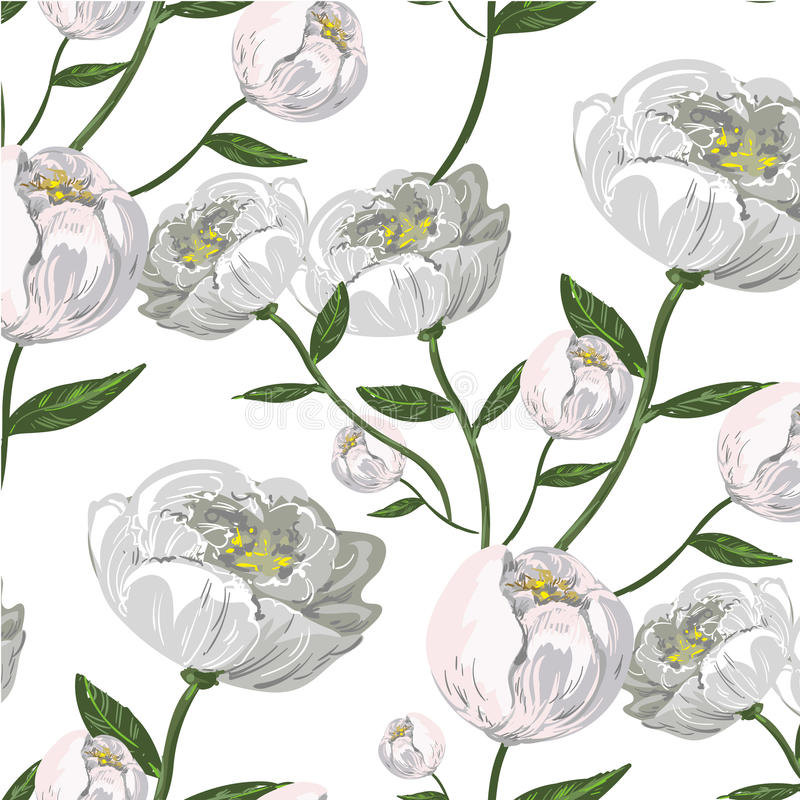 White Peony vector seamless pattern royalty free illustration