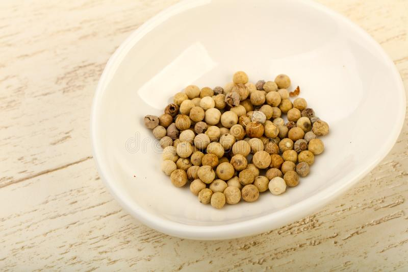 White pepper corn royalty free stock images