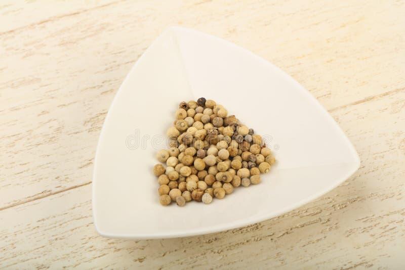 White pepper corn stock images