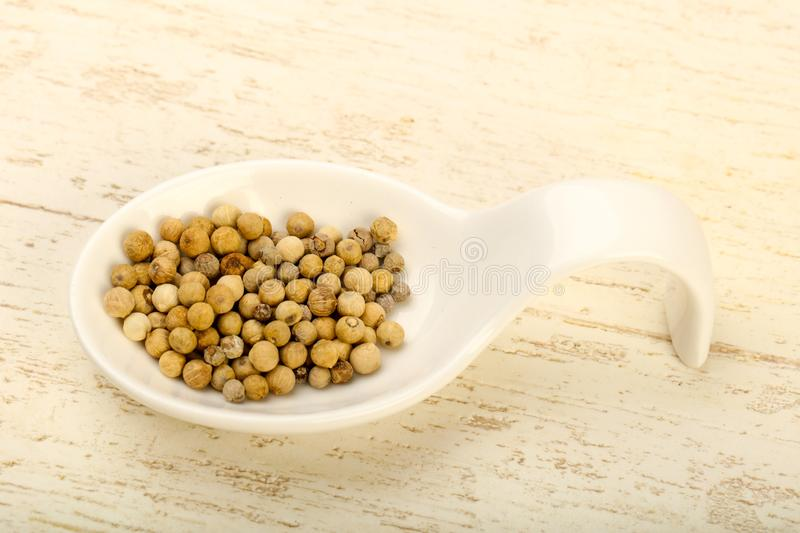 White pepper corn. Heap over wooden background royalty free stock photography