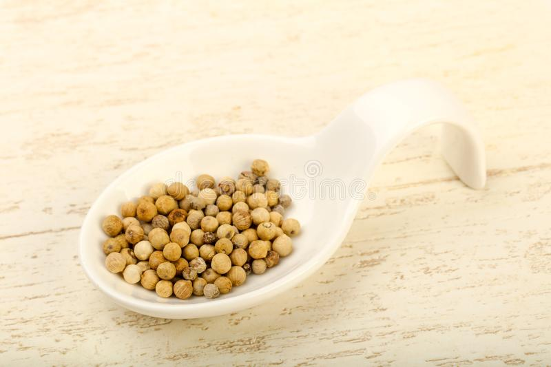 White pepper corn. Heap over wooden background royalty free stock photo