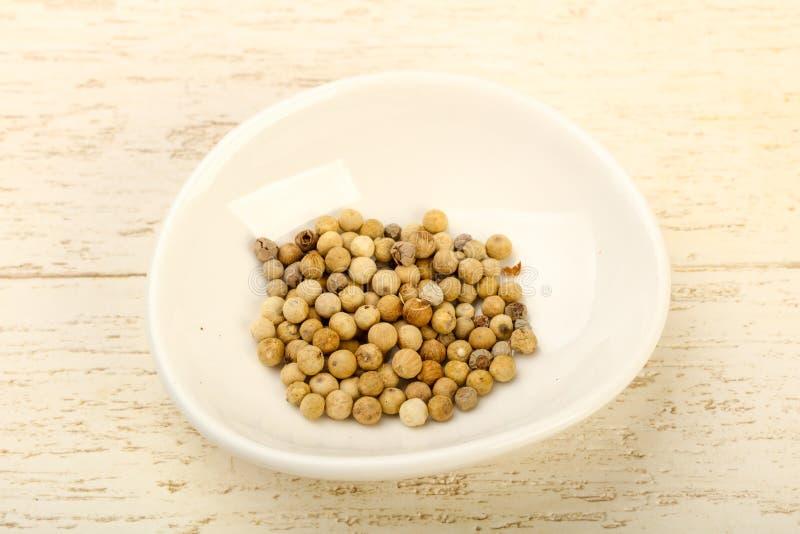 White pepper corn stock image