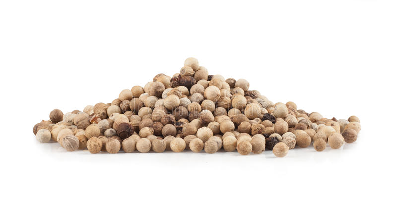 White pepper royalty free stock photography
