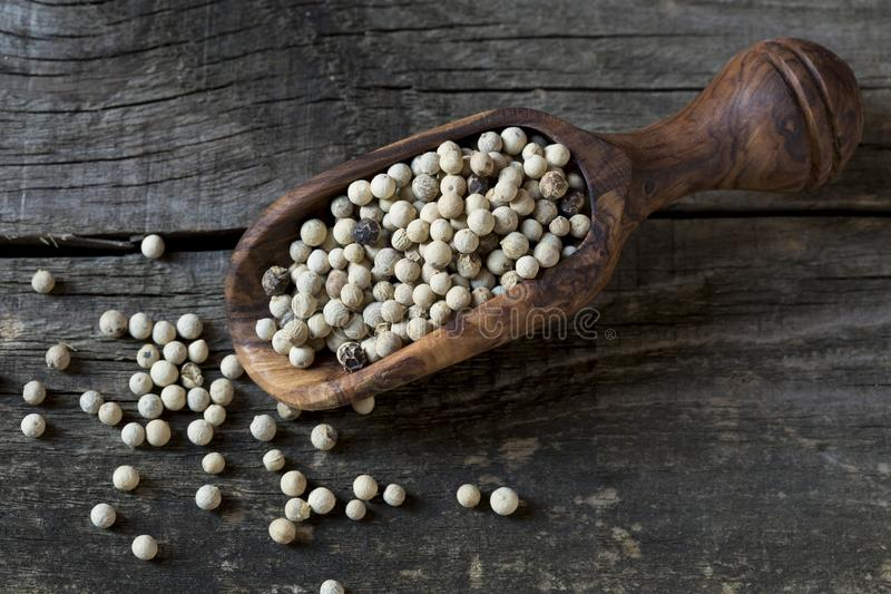White pepper. In wooden spoon stock photography