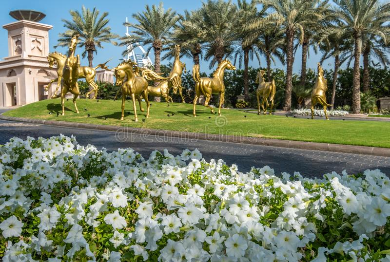 White petunias on the background of golden horses, palm trees and the Burj Al Arab hotel royalty free stock photography
