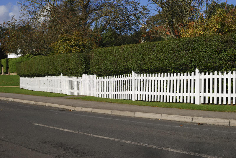 White picket fence and hedge. Surrey. England stock photography
