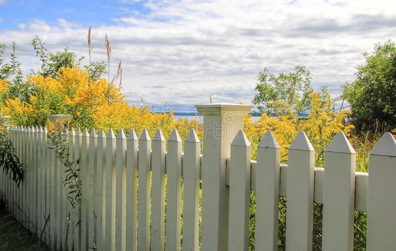 White Picket Fence. A white picket fence with yellow flowers in a field on the other side. There is a peek of a lake in the background and a blue sky with clouds royalty free stock image