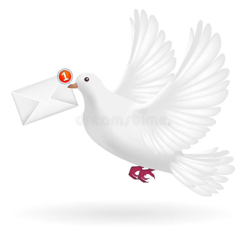 White pigeon flying with envelope mail message royalty free illustration