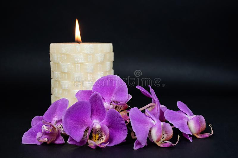 Candle and pink orchids on black royalty free stock image