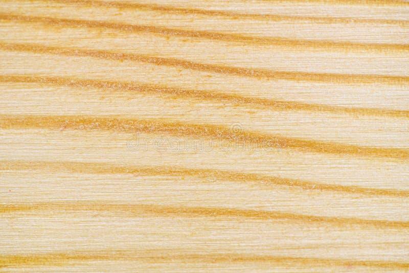 White Pine-Beschaffenheits-Muster stockfotografie