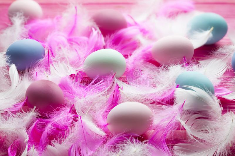 White and pink feathers and many colored Easter eggs on pink table stock image