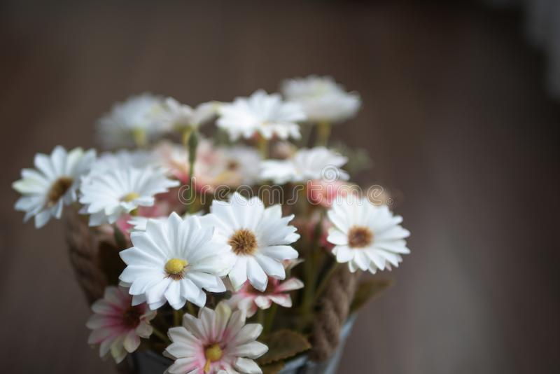 White and pink flowers on the wooden table with blurred background. Close up white and pink flowers on the wooden table with yellow pollen. Blooming of fake stock photo