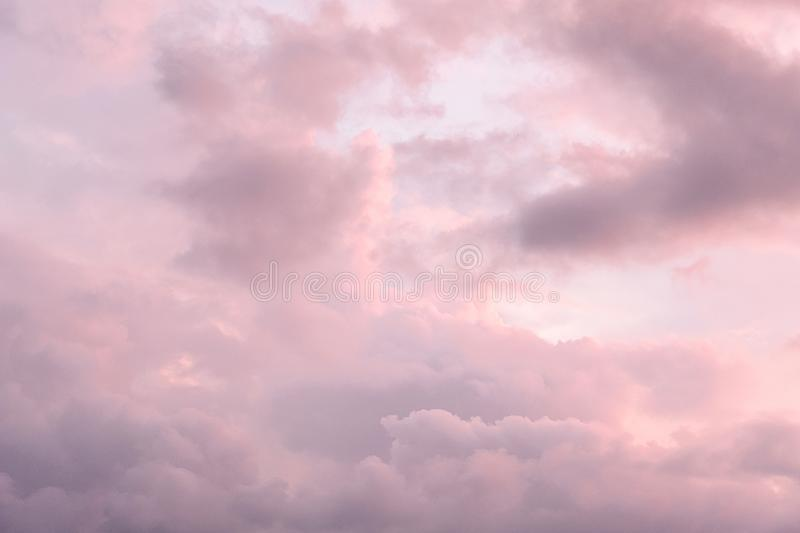 White, pink and gray Cumulus clouds in the free sky during sunset, close-up. Cloudy weather before the rain.  royalty free stock photography