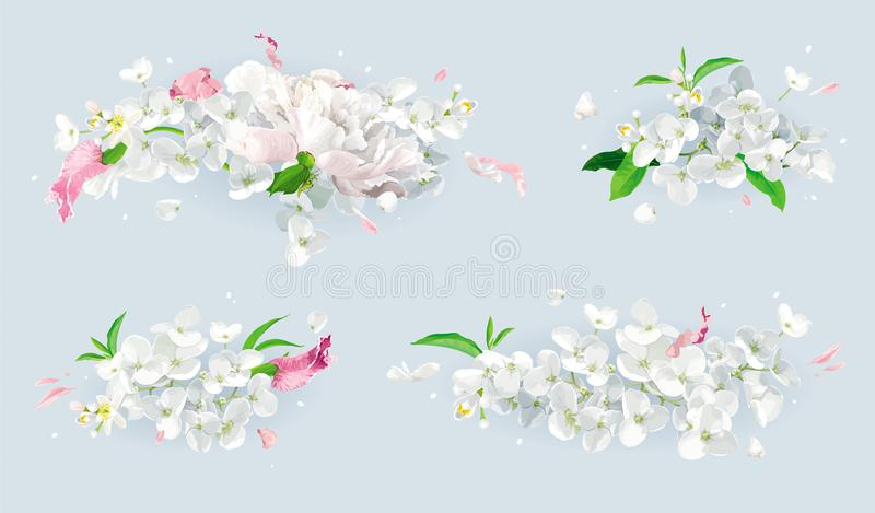 White and pink summer flowers bouquet set. Set of vintage floral vector bouquets: pink Chrysanthemums, Tulips, white Peonies, Apple blossom. Botanical drawing in stock illustration