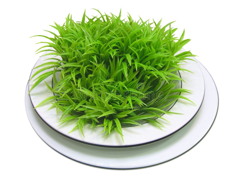 Download White Plate With Green Leaves Royalty Free Stock Image - Image: 2310946