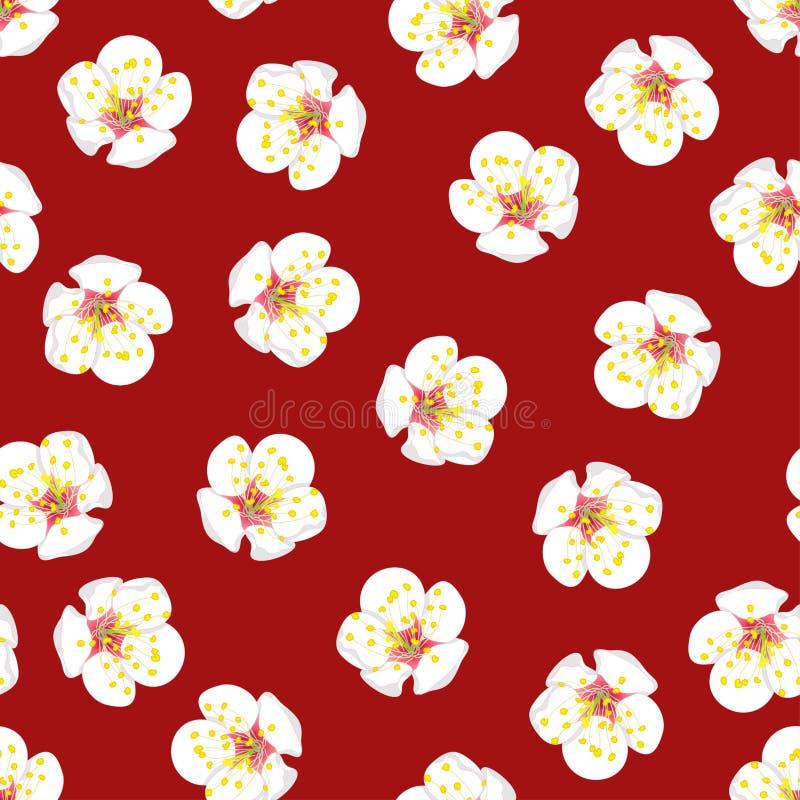 White Plum Blossom Flower Seamless on Red Background. Vector Illustration. royalty free illustration
