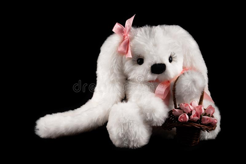 White plush hare toy on a black background stock images