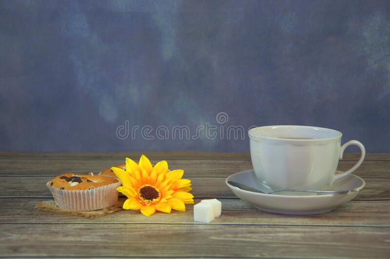 A white porcelain tea cup on a saucer and two cupcakes on a napkin, a yellow flower bud and two sugar cubes. Close-up royalty free stock photo