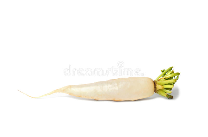 Download White Radish stock photo. Image of plant, food, isolated - 30662742