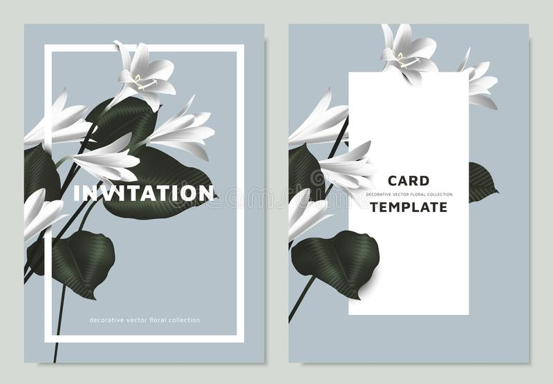 White rain lilies and Philodendron silk leaves with rectangle  frame on blue background, invitation card template. Design stock illustration