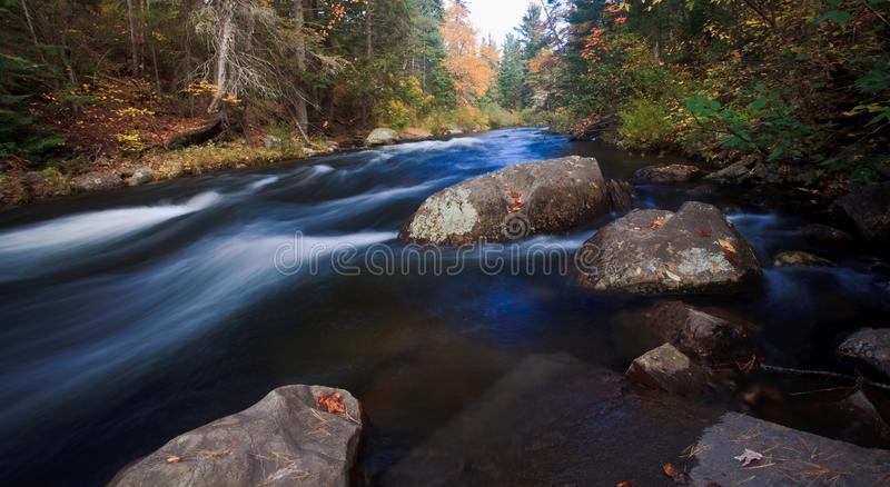White Rapid with fall color royalty free stock images